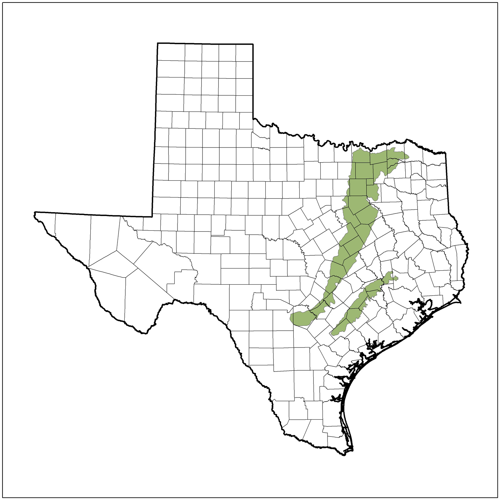 Texas Nature Trackers Target Species
