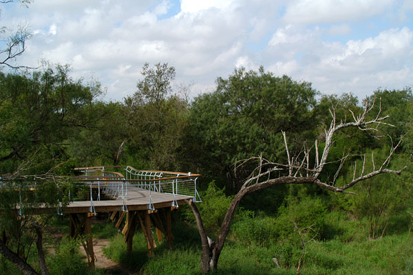 canopy camping chair task chairs with arms bentsen-rio grande valley state park hawk observation tower — texas parks & wildlife department