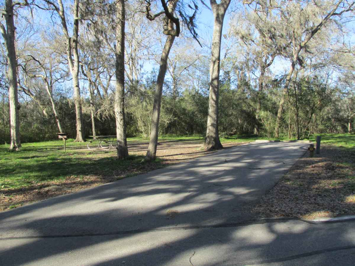 Brazos Bend State Park Premium Campsites Water and 50amp