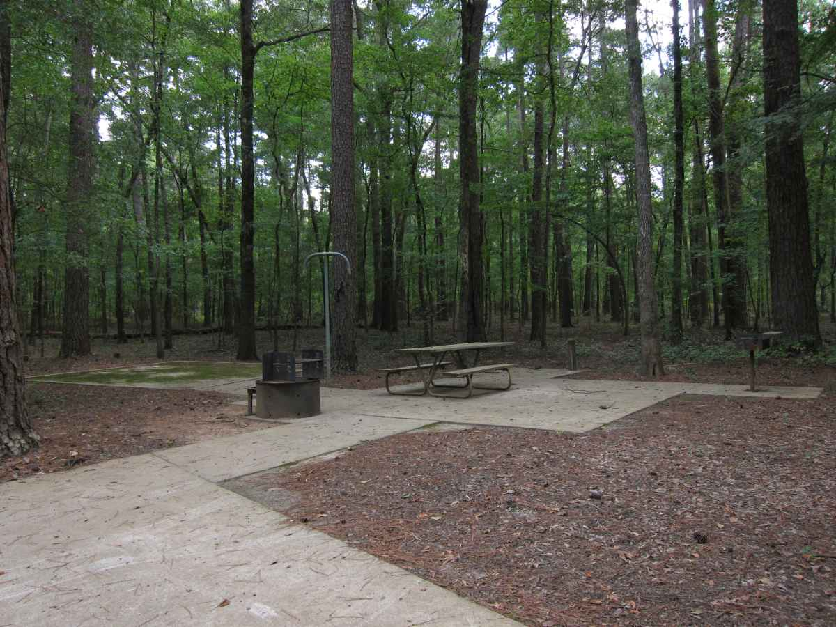 wheelchair motor reclining barber chair caddo lake state park campsites with water — texas parks & wildlife department