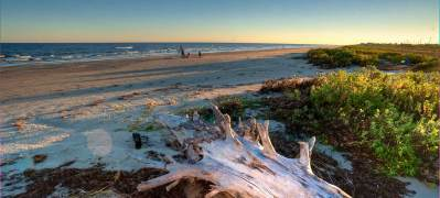 Galveston Island State Park — Texas Parks & Wildlife ...