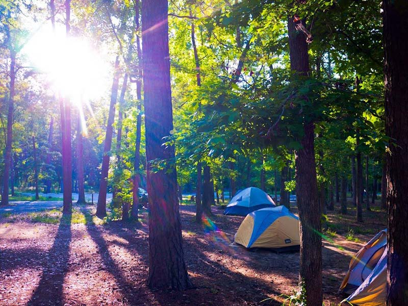 Huntsville State Park Campsites with Water  Texas Parks