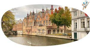 Expats en Bélgica