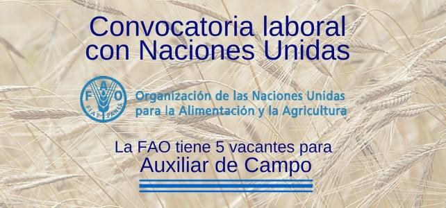 Cinco vacantes para Auxiliar de Campo con la FAO – Naciones Unidas