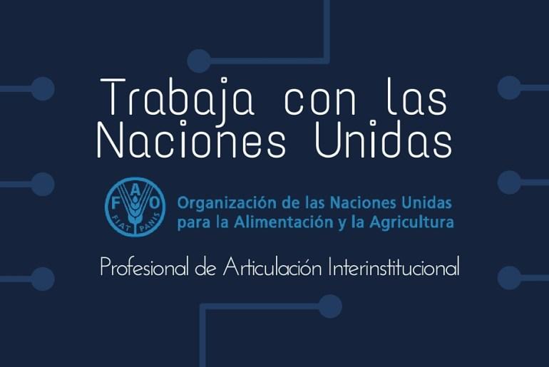 FAO articulacion