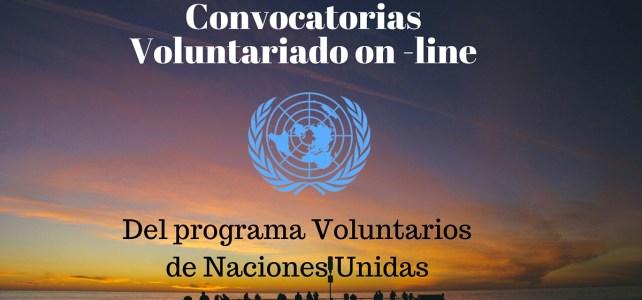 Convocatorias de Voluntariado on line del programa Voluntarios de Naciones Unidas
