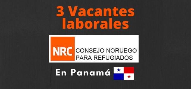 El Consejo Noruego para Refugiados abre vacantes laborales en Panamá