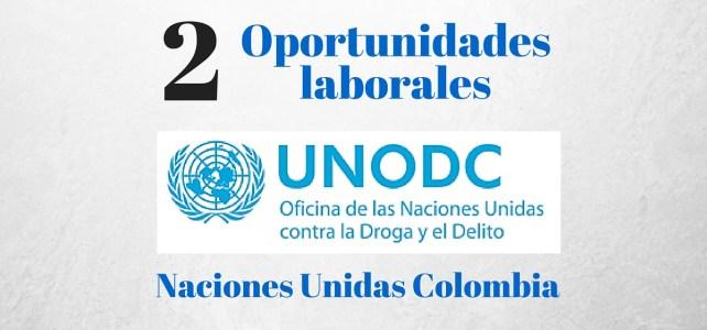 Vacantes en la Oficina de las Naciones Unidas contra la Droga y el Delito (UNODC)