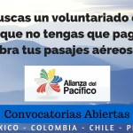 Voluntariado Alianza Pacifico