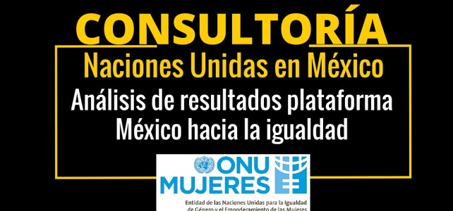 Consultoría con ONU Mujeres en México: análisis de resultados plataforma México hacia la igualdad
