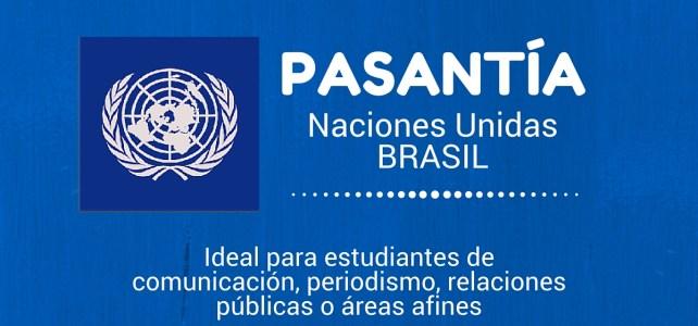 Pasantía con el PNUD – Naciones Unidas en Brasil – sin restricción de nacionalidad