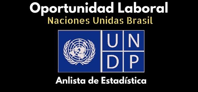 Trabaja con el PNUD en Brasil