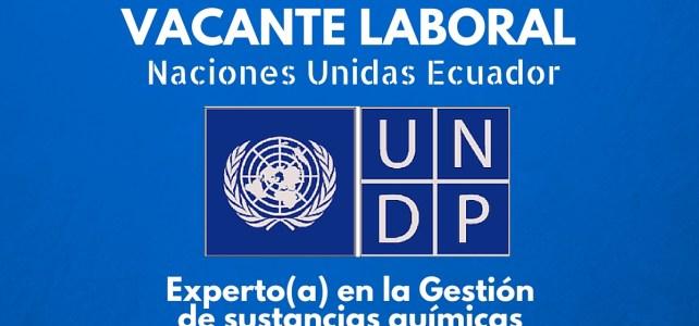 El PNUD en Ecuador abre convocatoria laboral