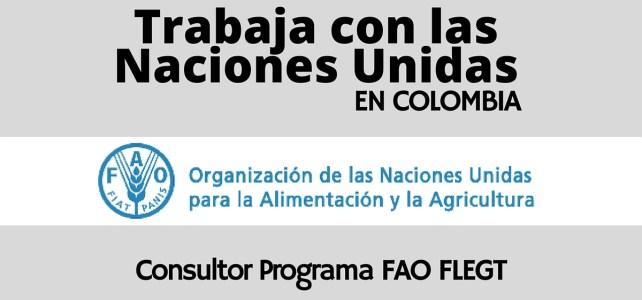 La FAO abre vacante laboral en Colombia para consultor(a)