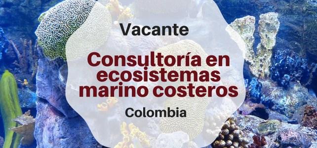 FAO abre convocatoria : Vacante Consultor en Ecosistemas Marino Costeros
