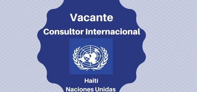 Vacante para Consultor Internacional oficina de Haití con PNUD