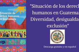SITUACION DE LOS DERECHOS HUMANOS EN GUATEMALA