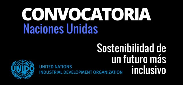 Convocatoria de las Naciones Unidad sobre sostenibilidad – para Jóvenes creativos !