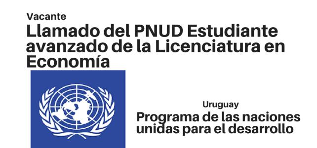 Llamado del PNUD para Estudiantes de Economía