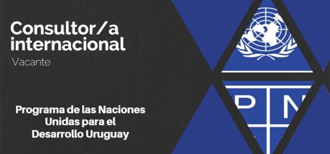 Vacante Consultor/a internacional para el cargo de Líder de equipo/Especialista en formulación de proyectos del Proyecto
