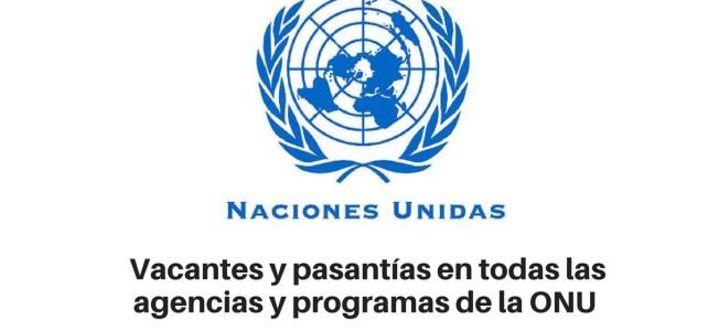 Vacantes y pasantías de las agencias y fondos de la ONU