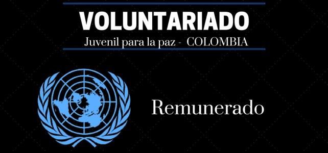 Voluntariados juveniles para la paz con Naciones Unidas en Colombia – remunerados