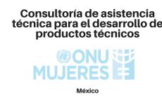 Consultoría para los proyectos de ONU Mujeres