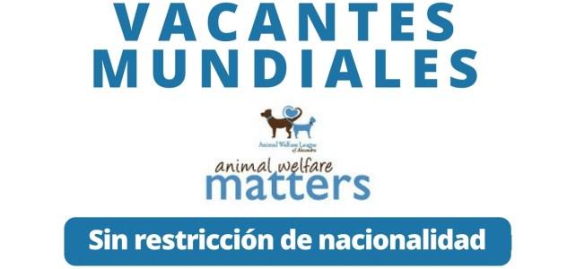 Convocatoria abierta con Animal Welfare League