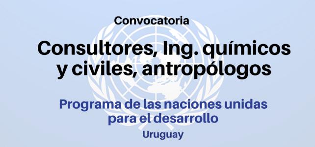 Vacantes para consultorías: Ing. Químicos y civiles, antropólogos con (PNUD)