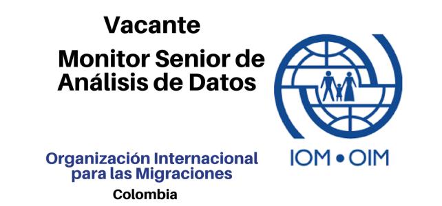 Monitor Senior de Análisis de Datos con OIM