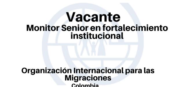 Vacante Monitor Senior en fortalecimiento institucional OIM