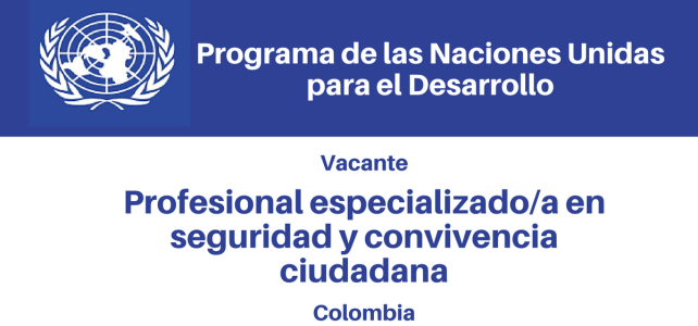 Vacante Profesional especializado/a en Seguridad y Convivencia Ciudadana PNUD