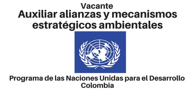 Vacante Auxiliar Alianzas y Mecanismos Estratégicos Ambientales PNUD