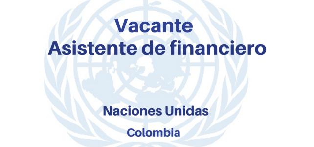 Vacante asistente financiero ONU