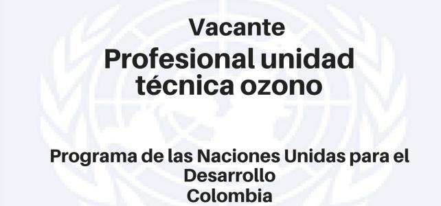 Vacante Profesional unidad técnica ozono PNUD