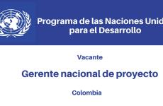 Vacante Gerente Nacional de Proyecto ODS