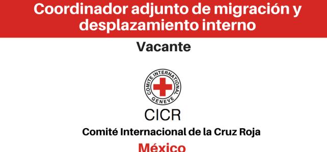 Vacante Coordinador adjunto de migración y desplazamiento interno CICR