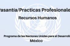 Pasantía / Prácticas Profesionales en Recursos Humanos PNUD