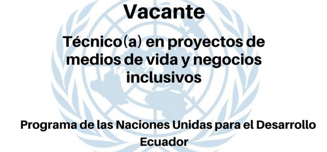 Vacante Técnico(a) en proyectos de medios de vida y negocios inclusivos PNUD