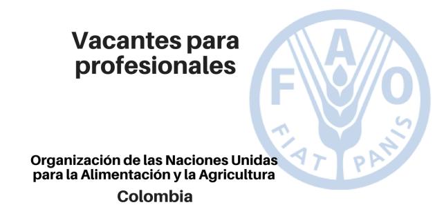 Diferentes Vacantes para profesionales FAO – Naciones Unidas