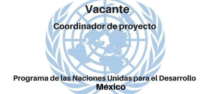 Vacante Coordinador/a de Proyecto con Naciones Unidas