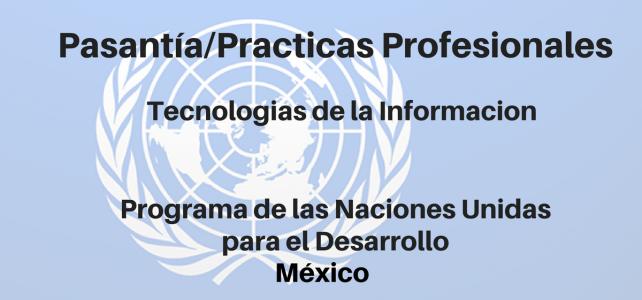 Pasantía/Prácticas Profesionales en Tecnologías de la Información PNUD