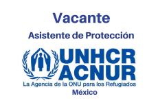 Vacante Asistente de Protección ACNUR