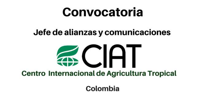 Vacante jefe de alianzas y comunicaciones CIAT