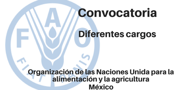 Convocatoria diferentes cargos con la FAO