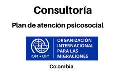 Consultoría Plan nacional de rehabilitación psicosocial