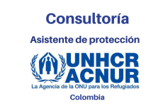 Consultoría Asistente de Protección ACNUR