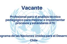 Vacante Profesional para el Análisis Técnico Pedagógico para Mejorar e Implementar Procesos y Estándares ATE PNUD