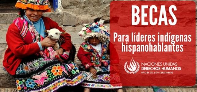 Convocatoria de la ONU para indígenas hispanohablantes