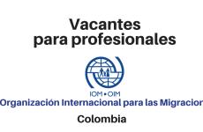 Vacantes para profesionales con la OIM